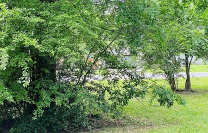 Land for Sale Near Me5